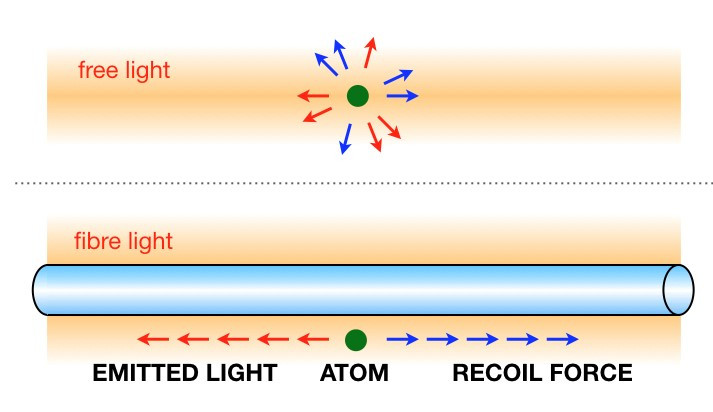 When an atom is placed close to the surface of an optical nanofiber, the light it emits and the recoil it experiences are in a well-defined direction along the fiber. Without the nanofiber the emission and the recoil are in random directions.  Credit:  Light-Matter Interactions Unit-Quantum Systems Unit, OIST.
