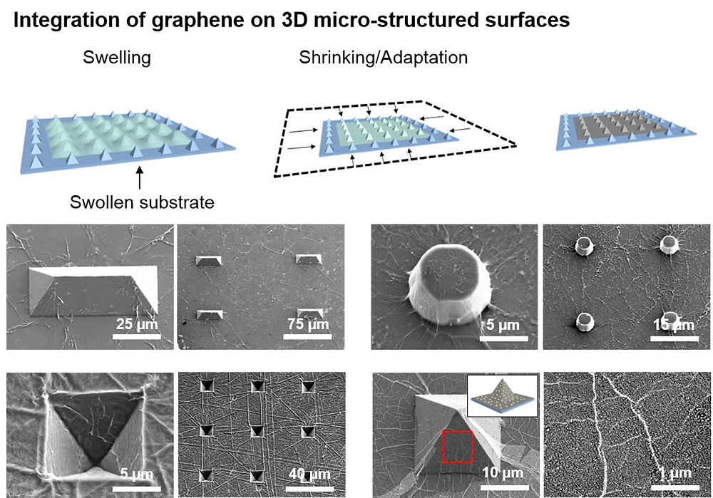 This study demonstrates graphene integration to a variety of different microstructured geometries, including pyramids, pillars, domes, and inverted pyramids.