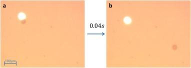 Caption: Ben-Gurion University of the Negev researchers demonstrate a light-generated bubble for microparticle propulsion. Panel (a) shows the 42?μm diameter spherical particle and the 405?nm laser beam as the respective dark and bright patches. Panel (b) shows that 40 milliseconds later the microsphere has traversed a distance roughly 10 times its size. @ Ben-Gurion U.