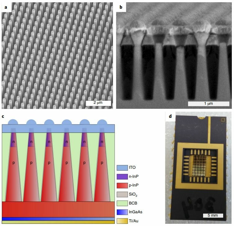 Tapered nanowire array device design. Credit: Nature Nanotechnology (2019). DOI: 10.1038/s41565-019-0393-2