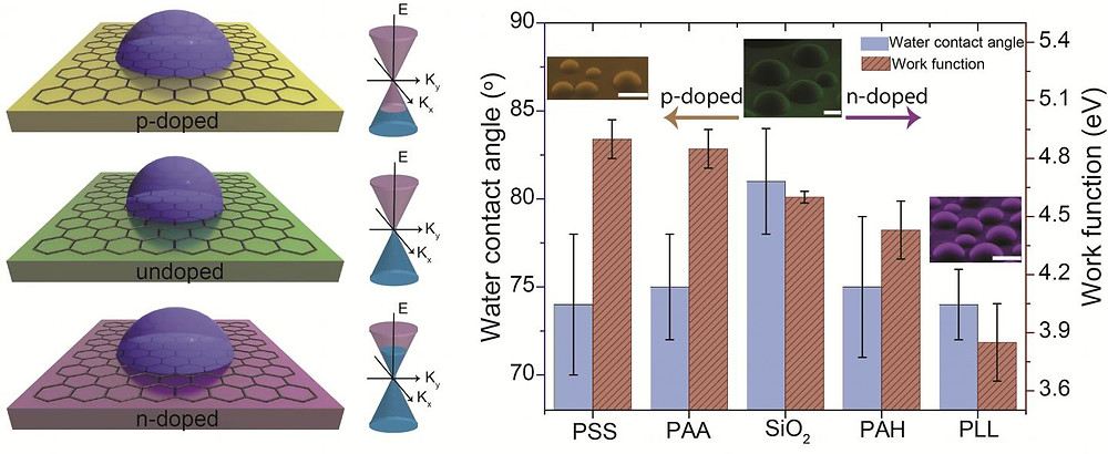 Doping-induced tunable wetting of graphene. @ University of Illinois