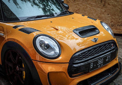 DuelL AG F56 front Vented Bonnet