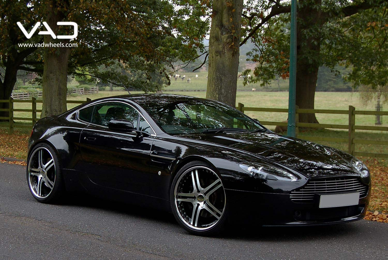 Aston-Martin-AMV8-Fitted-With-21''-Altstadt-S250--Black-&-Polished