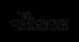 logo-compomotive.webp