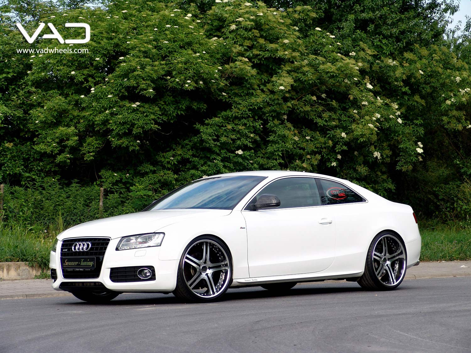 Audi-A5-21''Altstadt-S250--Polished
