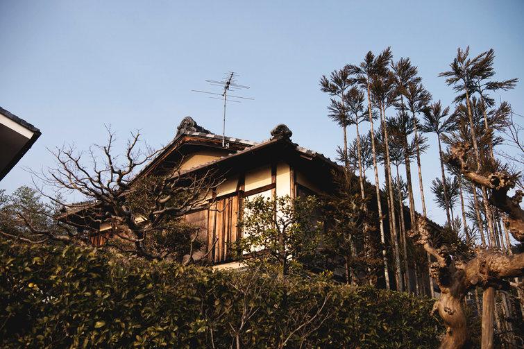 Japani_dokumentti_005.jpg