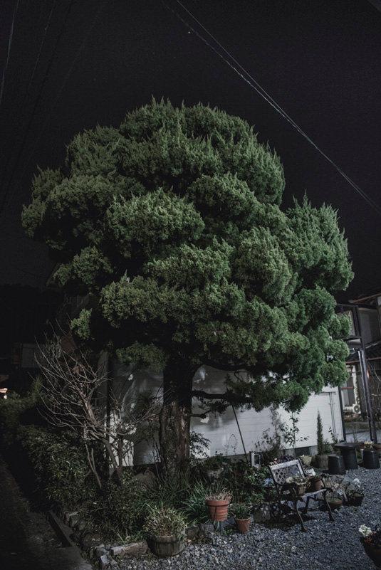 Japani_dokumentti_193.jpg