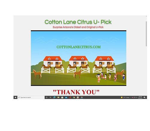 Cotton Lane.jpg