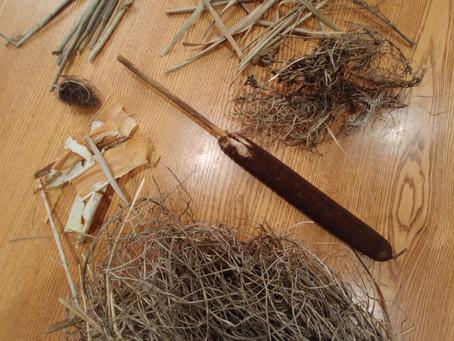 Collecting natural tinder