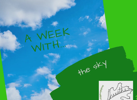 A WEEK WITH... the sky
