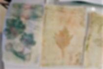 botanical printing (2).jpg