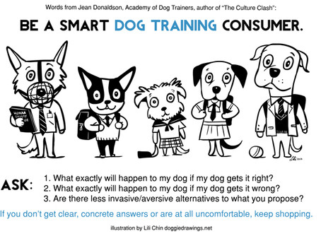 Thinking about hiring a dog trainer?