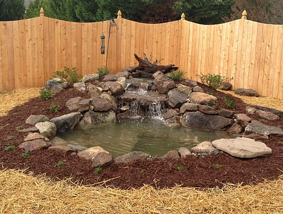 Garden Pond Designs Supplies Installation Greensboro NC Pond