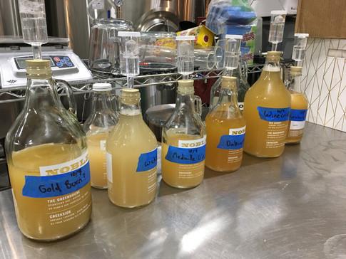 First Crop, First Cider