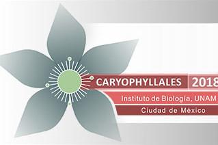 Caryophyllales 2018