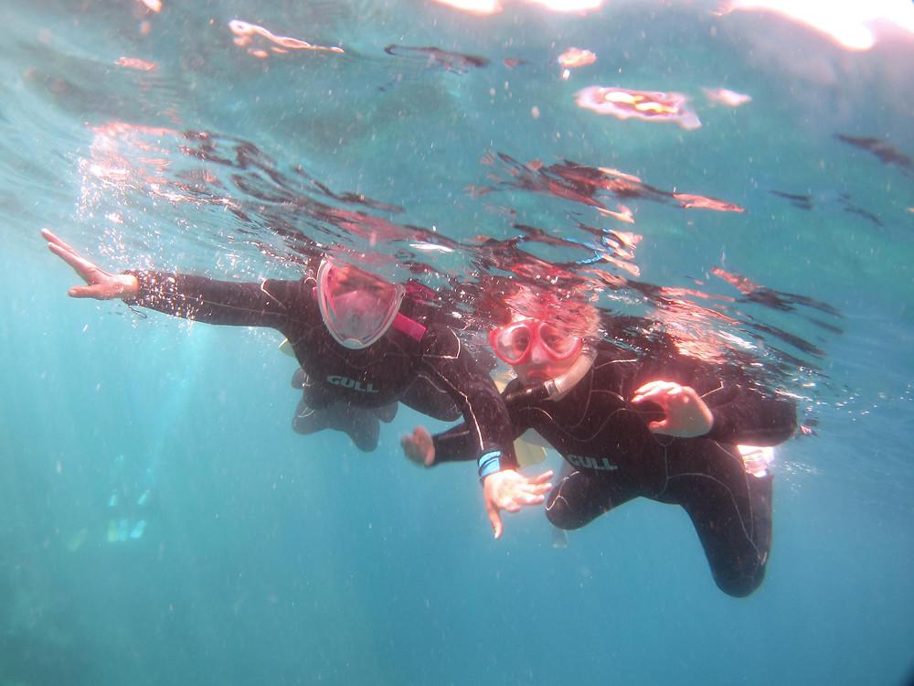 恩納村青の洞窟スノーケリング残波ダイビング