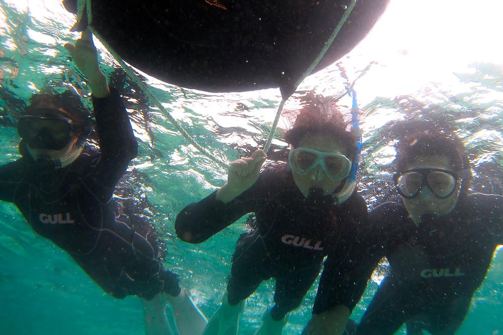 恩納村青の洞窟体験ダイビングシュノーケリング