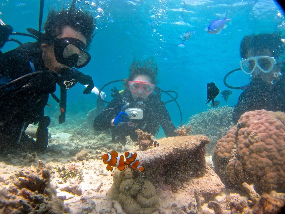 水納島瀬底島ダイビングシュノーケリング