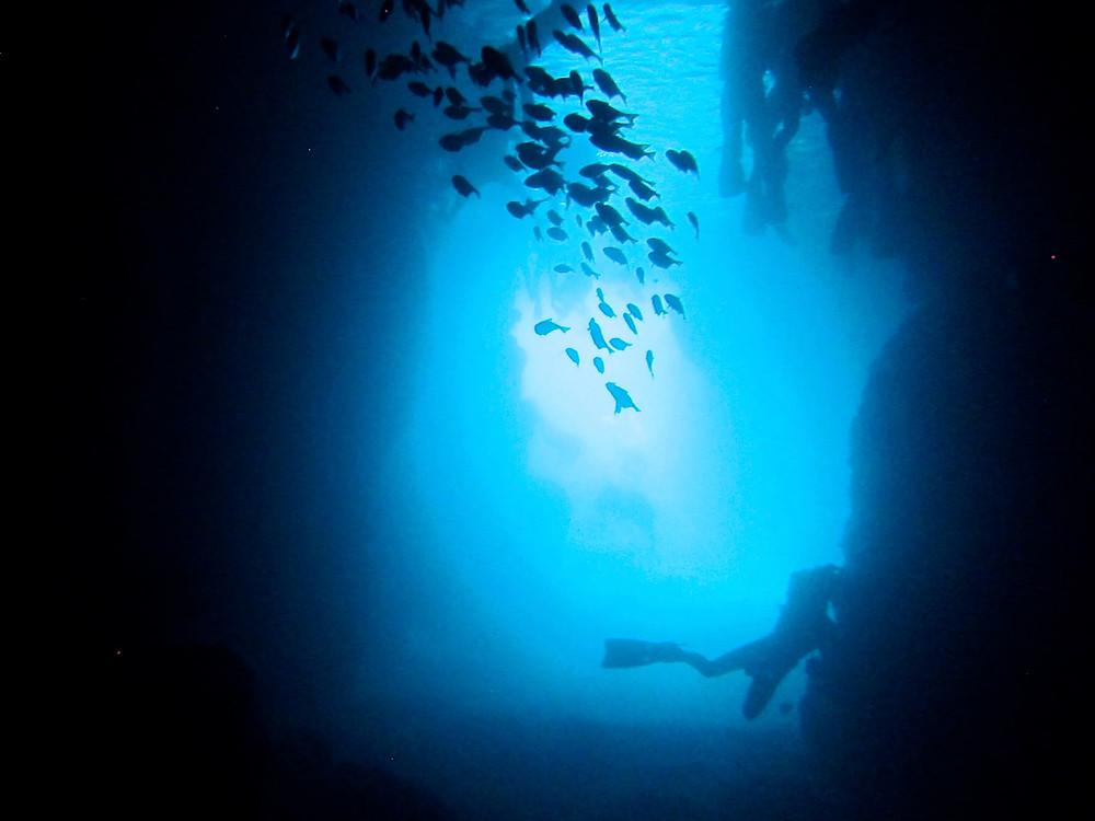 恩納村青の洞窟ダイビング万座