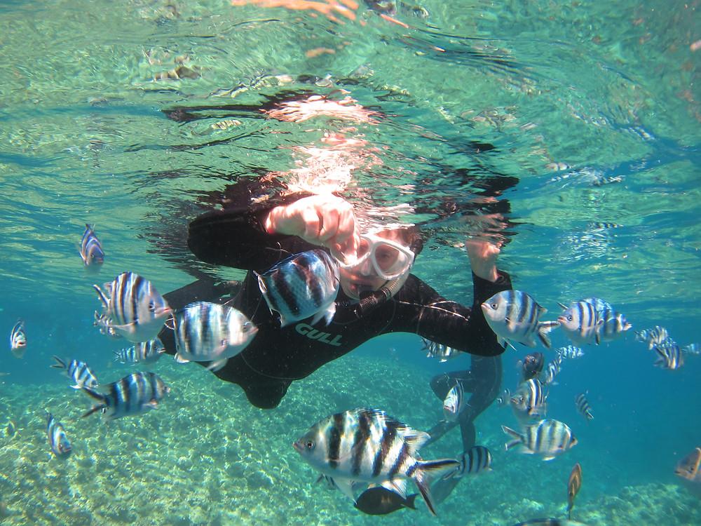 恩納村青の洞窟水納島万座ダイビング