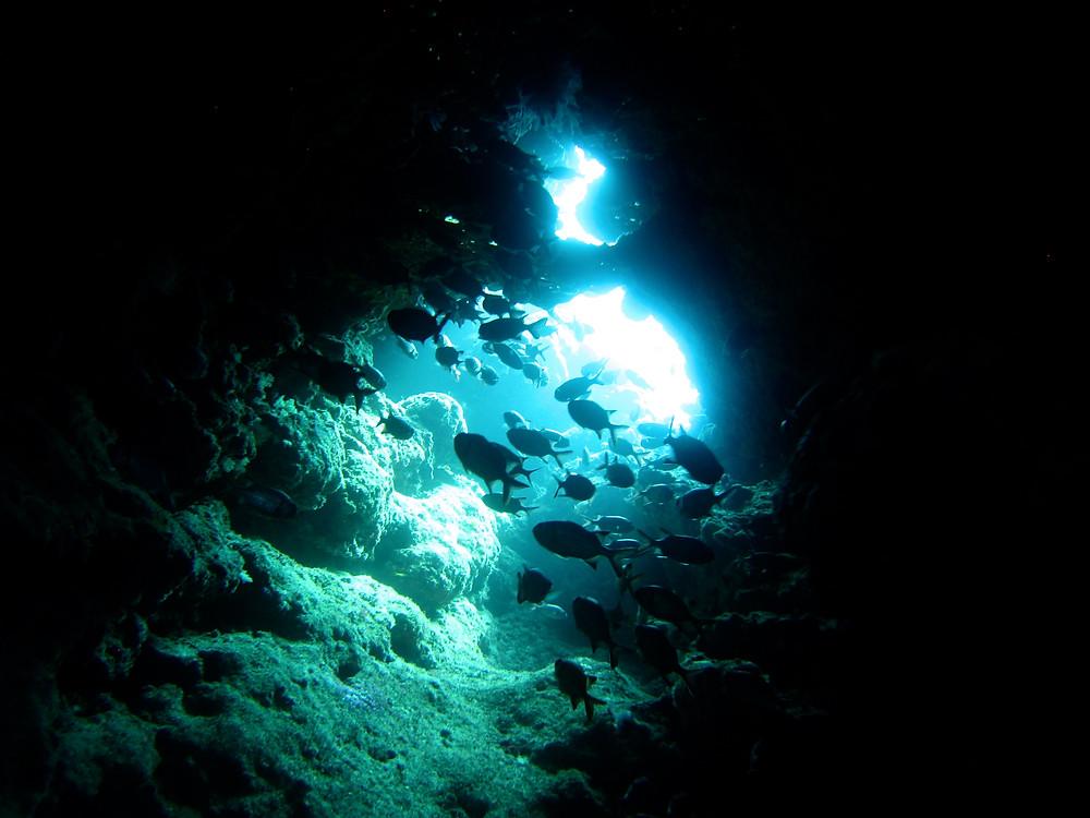 恩納村青の洞窟万座体験ダイビングファンダイビング