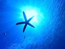 snorkeling okinawa