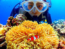 discover scuba diving okinawa