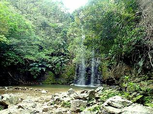 沖縄本島恩納村 ダイブセンターアイルズ 与論島ツアー