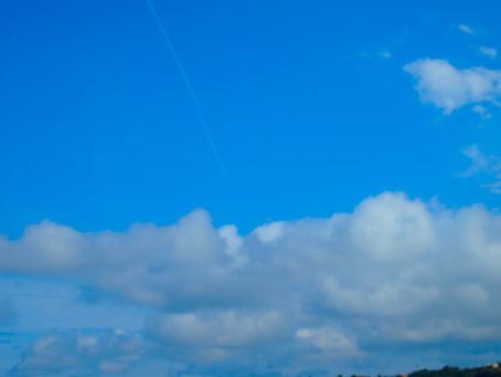 青空の下ホエールウォッチング&ダイビング