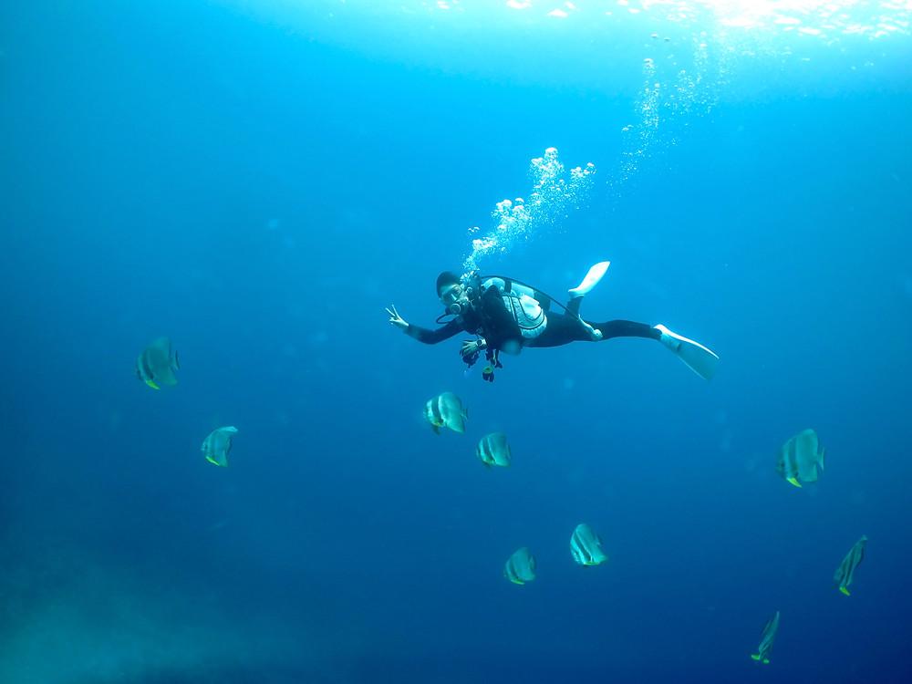 恩納村万座青の洞窟ダイビング