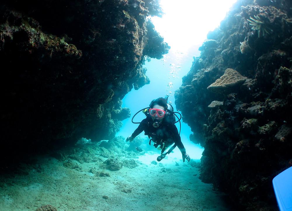 恩納村青の洞窟ジンベエゴリラチョップダイビングスノーケリング