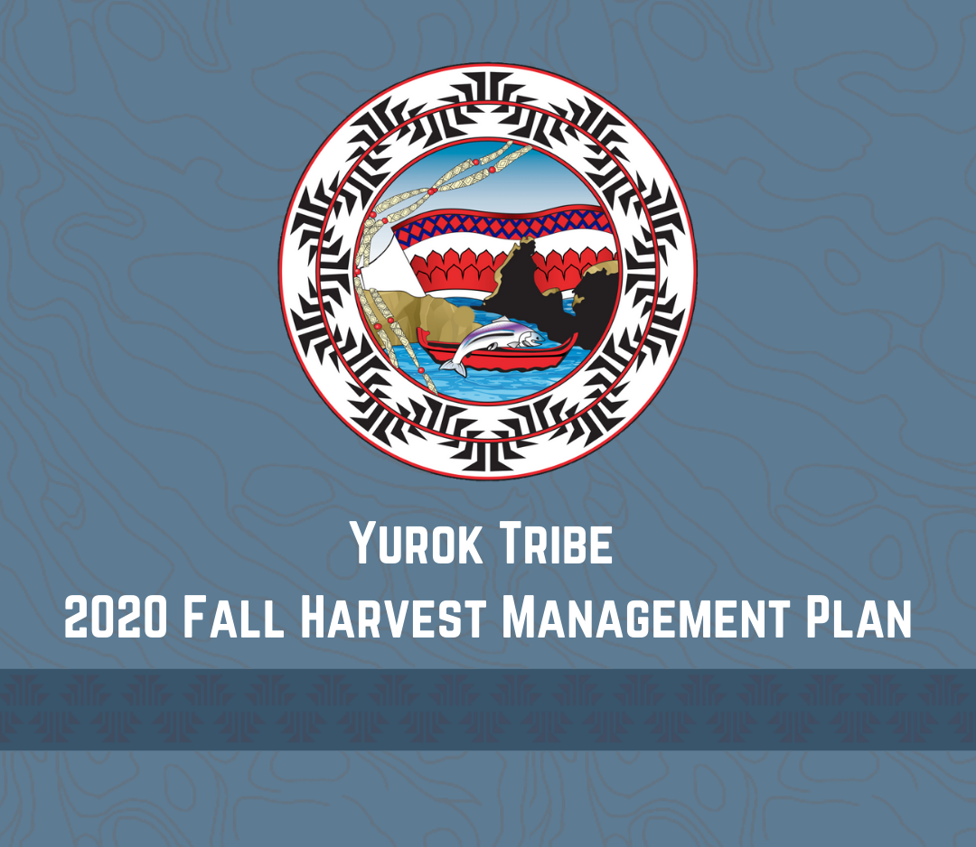 Yurok Tribe 2020 Fall Harvest Management Plan
