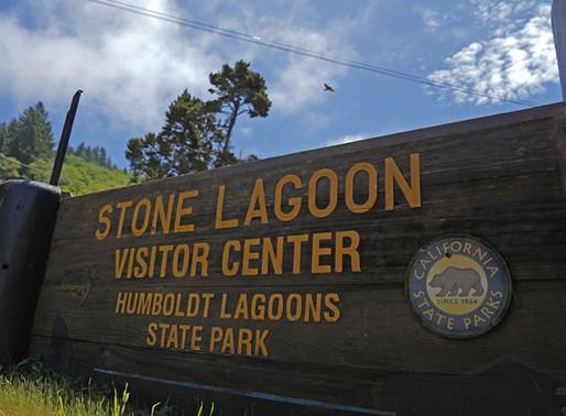 Yurok Tribe Will Soon Begin Operating the Stone Lagoon Visitor Center