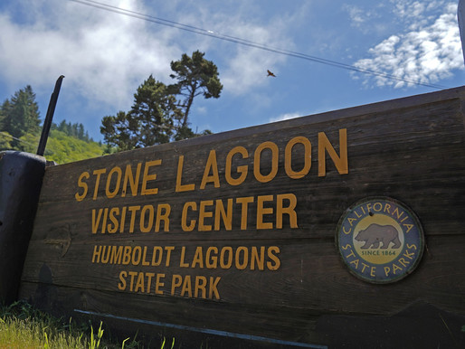 Yurok Tribe Will Soon Begin Operating the Stone Lagoon Visitor Center