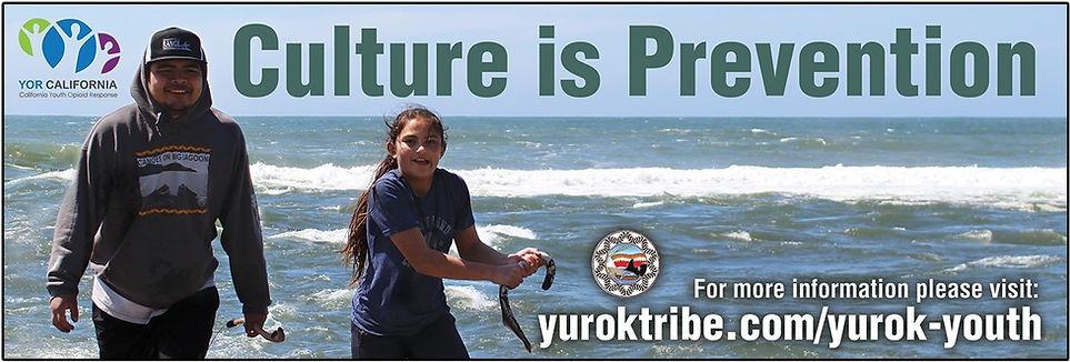 Yurok Tribe Klamath Billboard Design.jpg