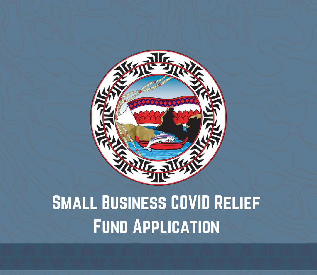 Small Business COVID Relief Fund Application