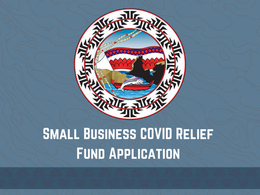 Tribal Council Directs $2 million in CARES Funding to New Financial Relief Program