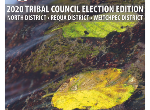 Yurok Today Newsletter - 2020 Tribal Council Election Edition