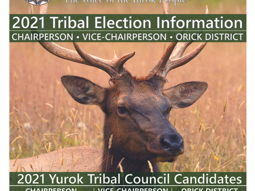 Yurok Today - The Voice of the Yurok People - Election Edition
