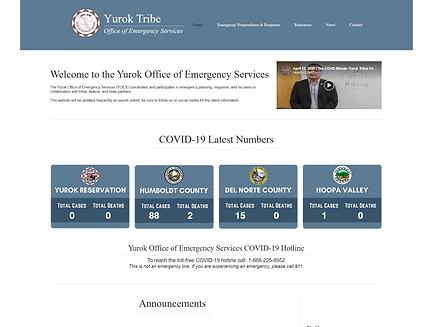 YOES Website.png