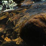 Rock Flow in August