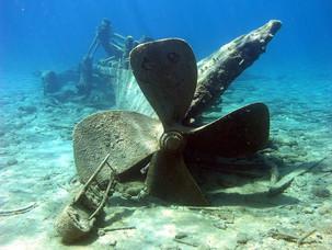 O naufrágio e o desespero