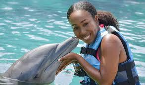 Dolphins Clove