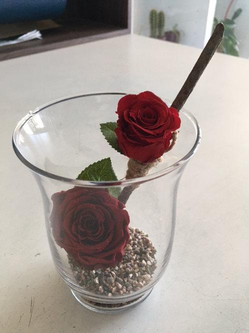 Rose éternelle rouge en duo