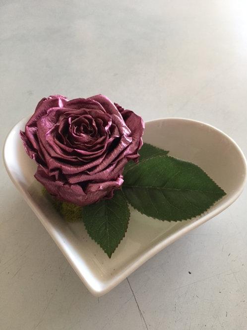 Rose éternelle: ''Je t'offre mon coeur''