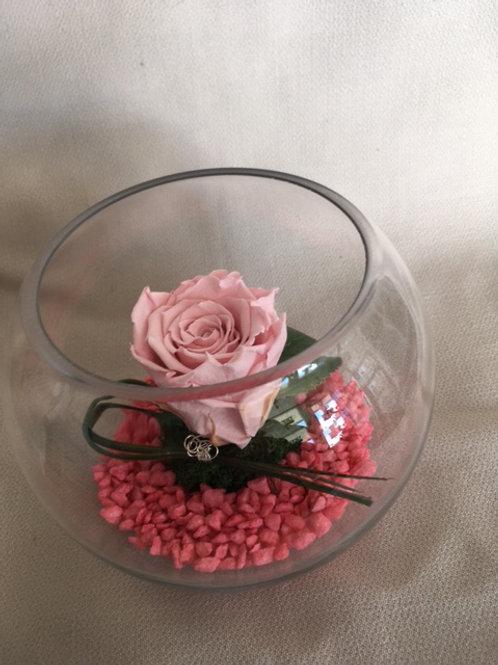 Rose éternelle rose en bulle