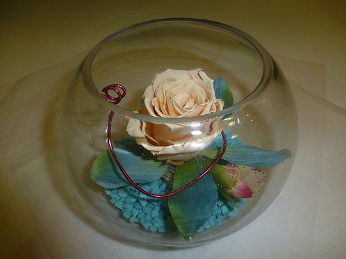 Rose éternelle blanc en bulle