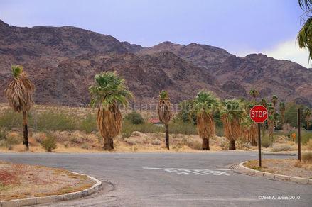 Nevada stop sign 2010.jpg