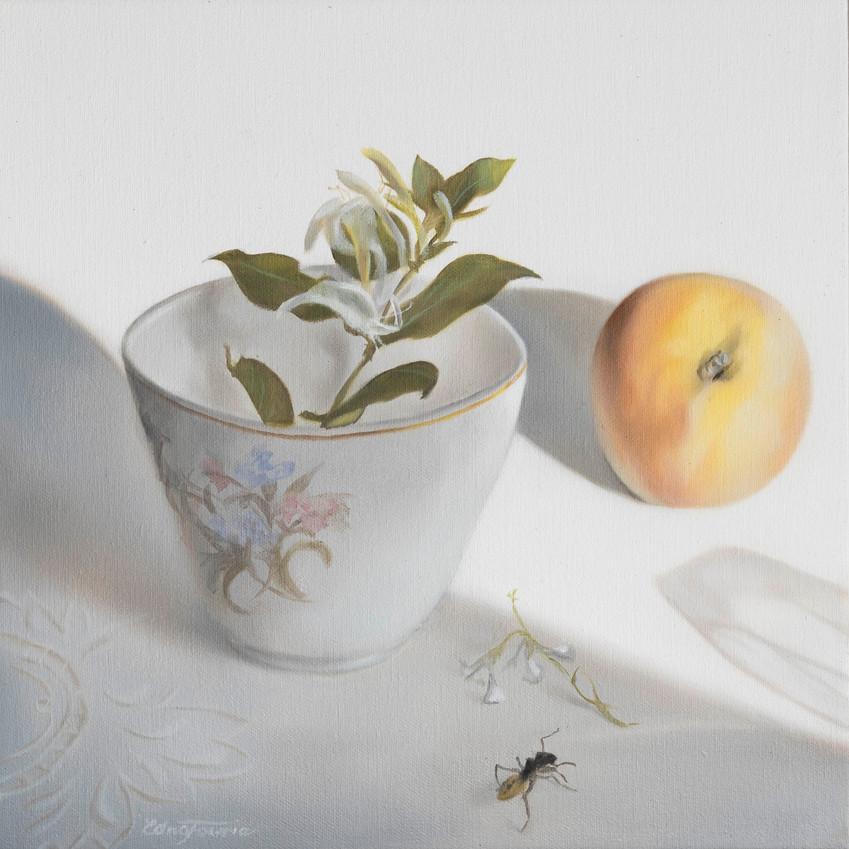 'Harvest' (Ant)