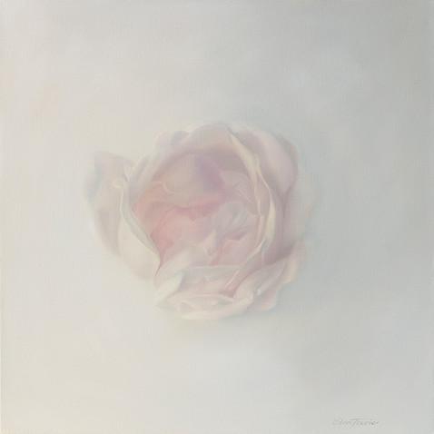 Feminine Essence : Rose 3